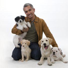 A csodálatos kutyadoki visszatér – nem csak kutyáknak